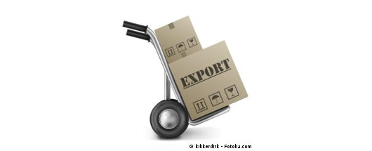 halal export entrepreneur