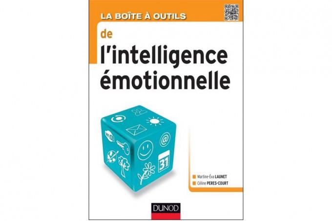La boîte à outils de l'intelligence émotionnelle - éditions Dunod