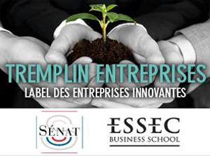 Tremplin-entreprise