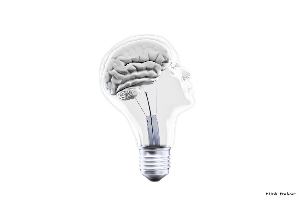 Les bases pour garder un cerveau productif