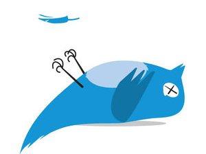 twitter, entrepreneur les pigeons Bertrand Delanoë