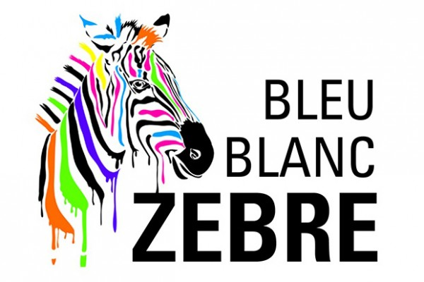Bonjour scrap dcwv rainbow zebra for Alexandre jardin amazon