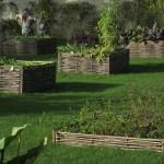 vegetable-garden-1006281_960_720