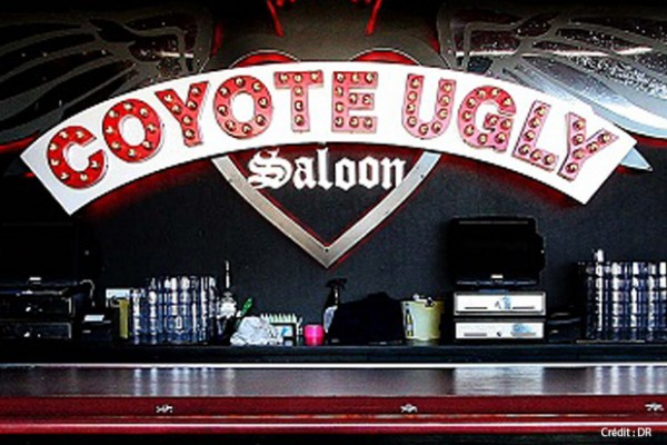 coyote-ugly-une